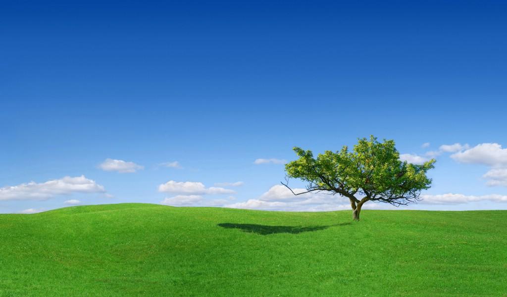 桌面壁纸 风景壁纸 > 碧海蓝天海边美丽风景桌面壁纸 山水风景桌面