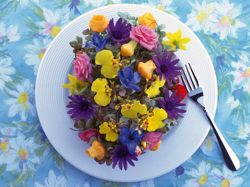 壁纸800×600花艺大餐 2 16壁纸 花艺大餐壁纸图片花卉壁纸花卉图片素材桌面壁纸